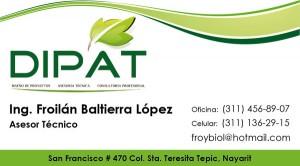DIPAT - Tarjeta de Presentacion