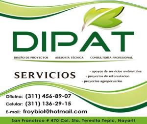 DIPAT - Vinil para Vehículos